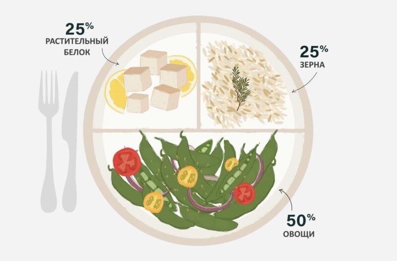 Схема тарелки вегана