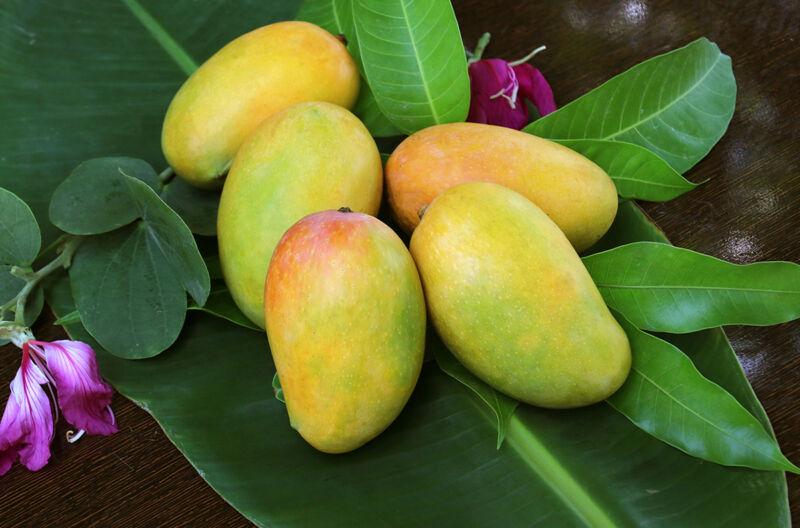 Если вы пытаетесь похудеть, вам стоит держаться подальше от этих фруктов!