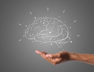 Лучшие продукты для здоровья мозга: 12 способов улучшить память и неврологические функции с помощью диеты